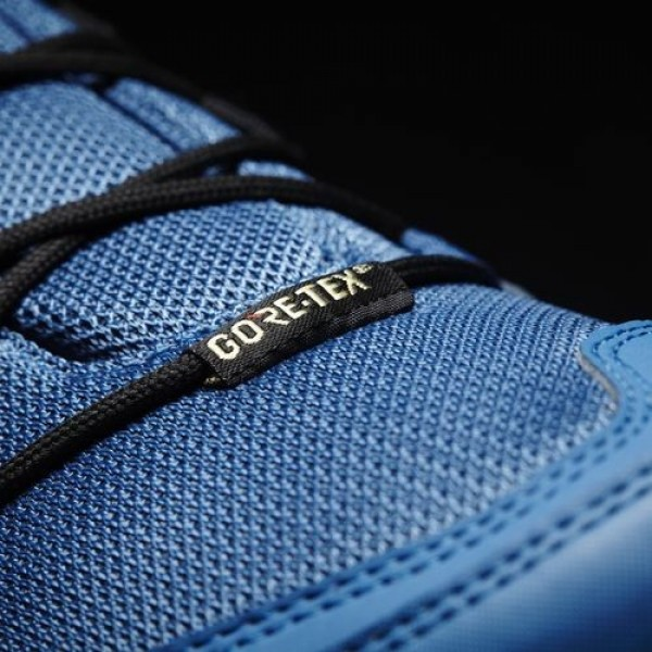 Adidas Ax2R Gtx Homme Core Blue/Core Black/Mystery Blue TERREX Chaussures NO: BB1986